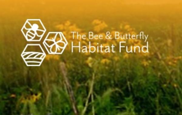Bee and Butterfly Fund