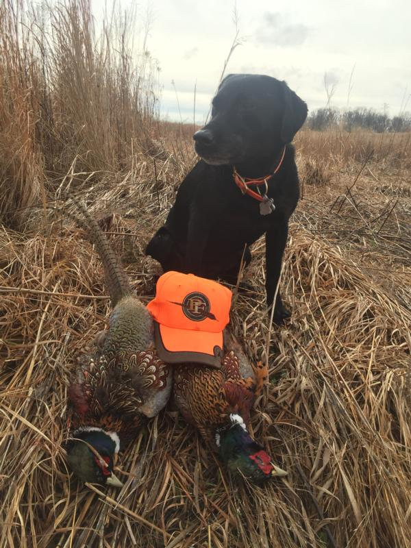 Deer Creek Pheasants Forever