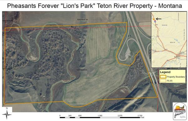 Teton River Property
