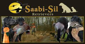 Saabi Sil Retriever