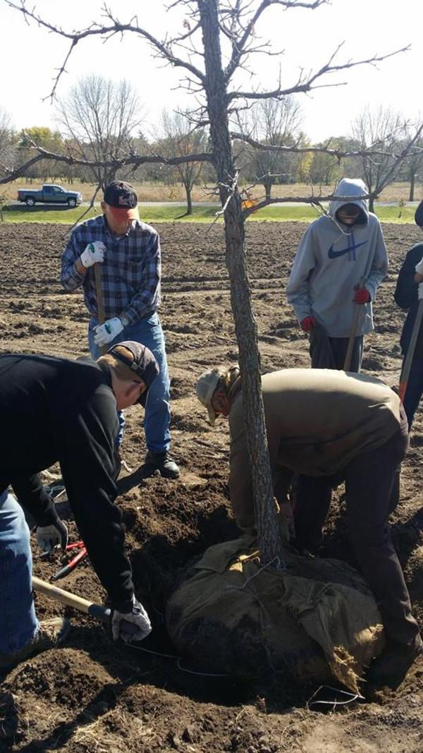 We were proud to be partner with Linn County Conservation Department to help plant trees at Squaw Creek in 2016! Along with local Boy Scouts, and The Kirkwood College Conservation program students. 40 trees planted!