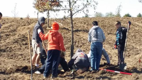 Example of Habitat Outreach - Savanna Grassland Tree Planting Project (Squaw Creek Park, Marion, Iowa)