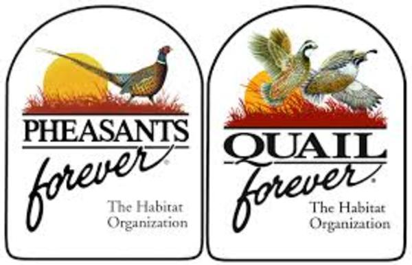 Iowa Pheasants Forever & Quail Forever Convention