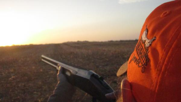 Michigan Pheasants Forever - About Us Page