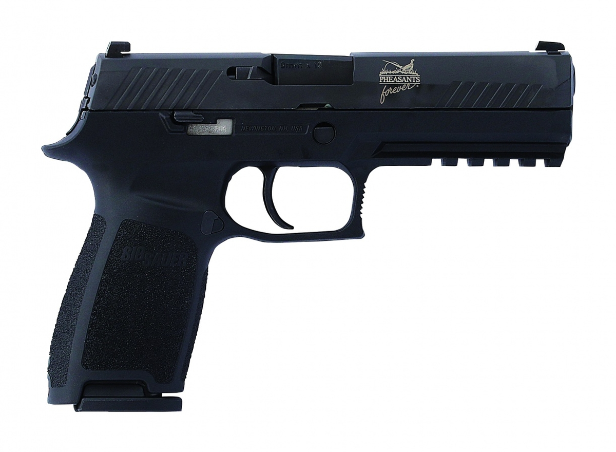 PF National package,  Sig Sauer 9 mm pistol