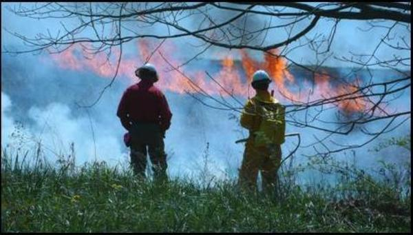 PF Prescribed Burn Team