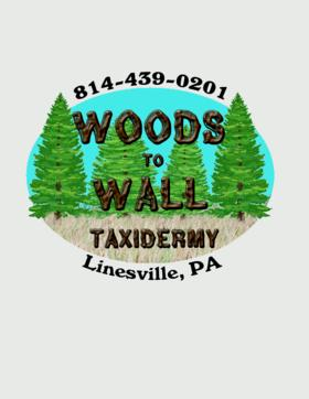 Woods to Wall Taxidermy