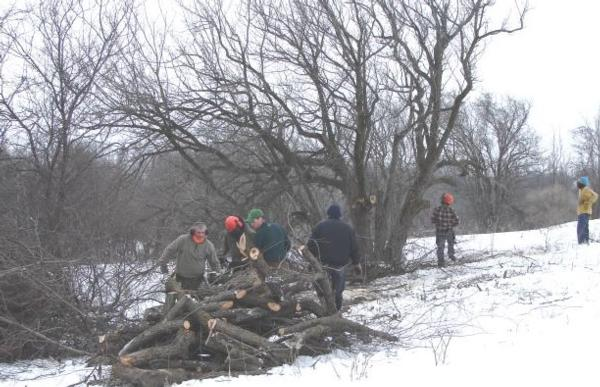 Habitat Work Day & Pheasant Hunt
