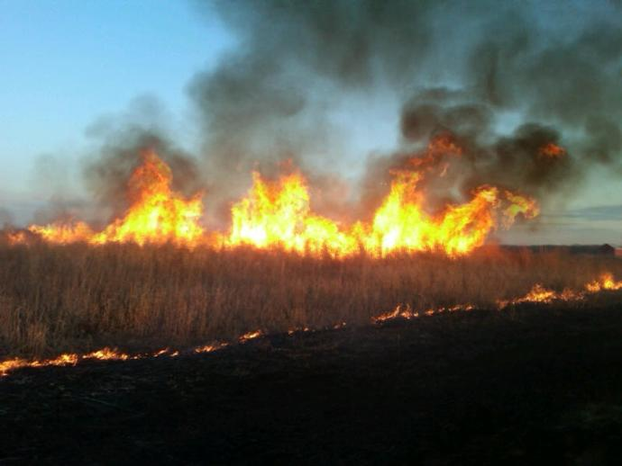 Controlled Burn in Clinton County