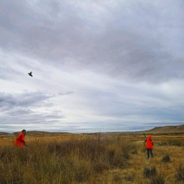 Inland Empire Chapter of Pheasants Forever - Youth Page
