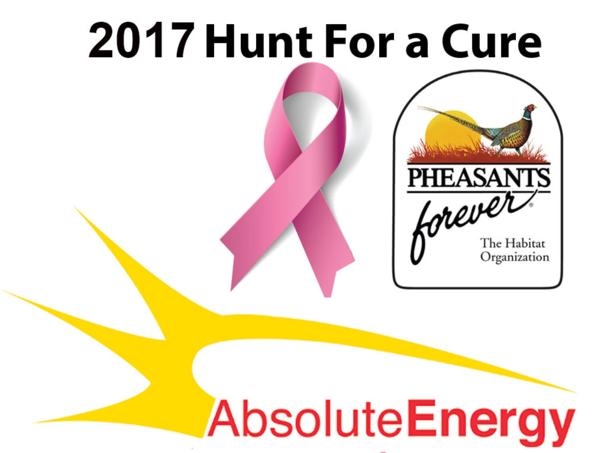 2017 Hunt For A Cure Check Presentation