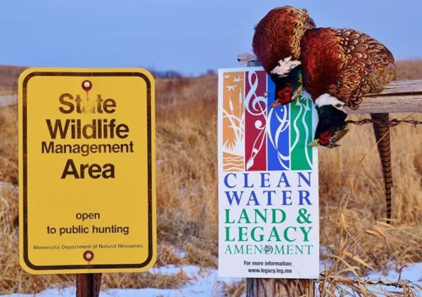 PHEASANTS FOREVER EXPLORES THE MINNESOTA PICTURE.