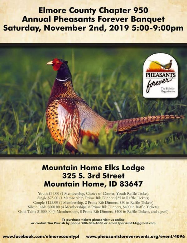 Please considering supporting our neighboring Pheasants Forever chapter on Nov. 2 !