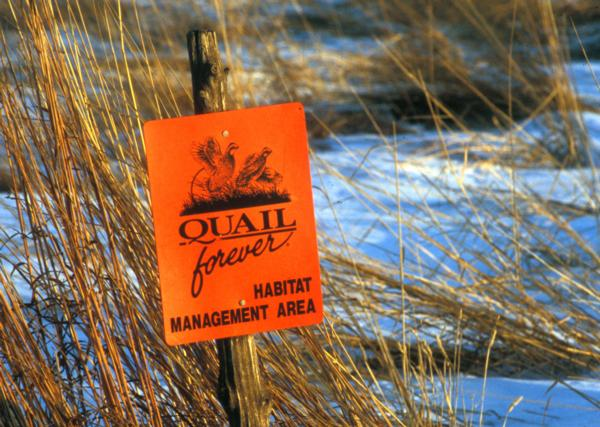 Snake River Quail Forever Chapter 3208 - Habitat Page