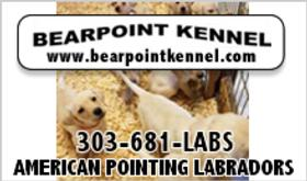Bearpoint Kennel
